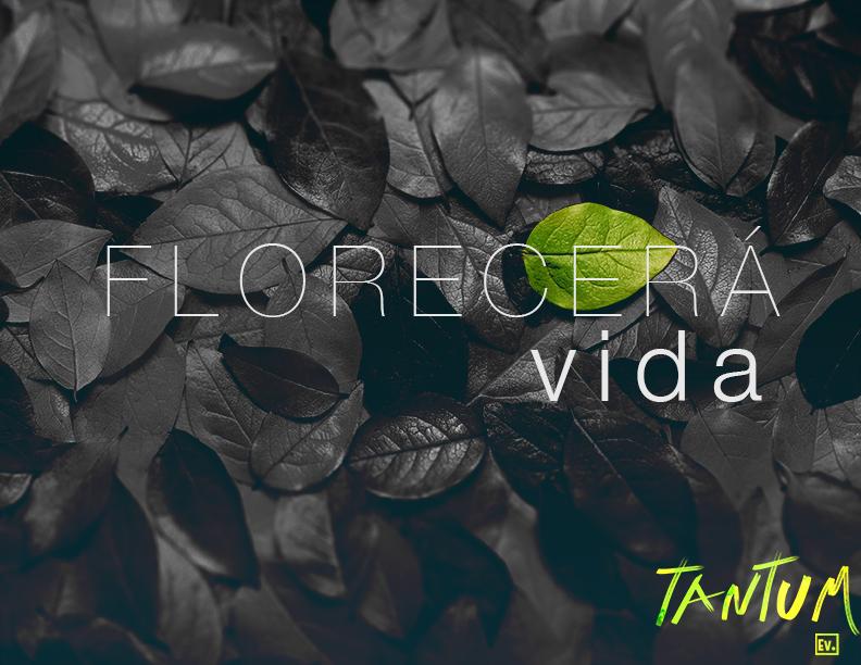 Florecera Vida - Tantum
